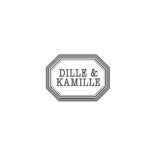 logo dille kamille retail innovation